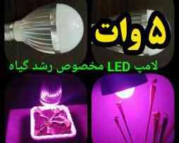 led-5w