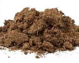 خاک گیاهان گوشتخوار