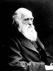 چارلز داروین - دنیای گیاهان گوشتخوار